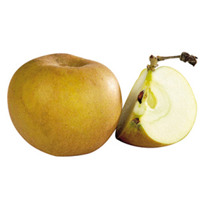Pomme Canada – Le kg 1