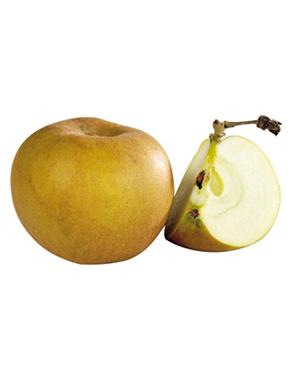 Pomme Canada - Le kg