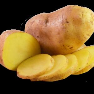 Pomme de terre Allians bio - Le kg